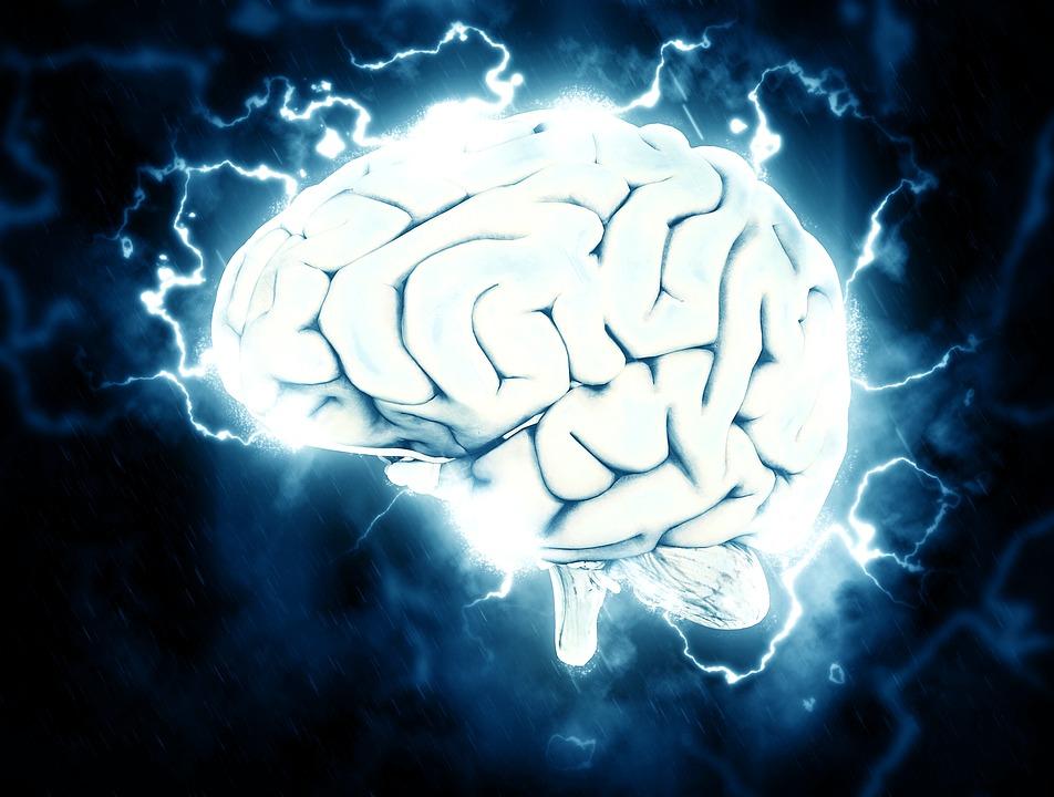 Чем умнее человек, тем меньше у него связей между нейронами мозга