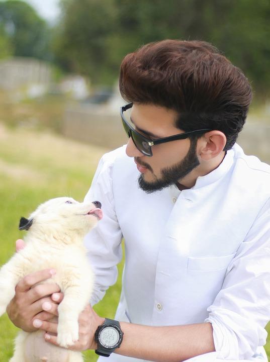 В мужских бородах находится значительно больше микробов, чем в шерсти на шее собак