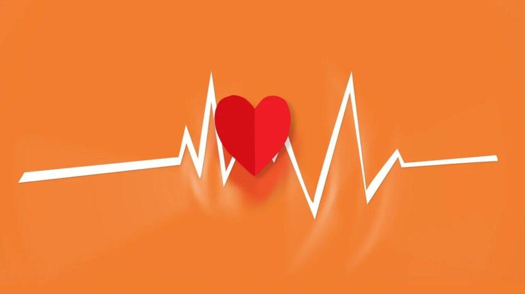 Жировая ткань защищает женщин от смерти от болезней сердца