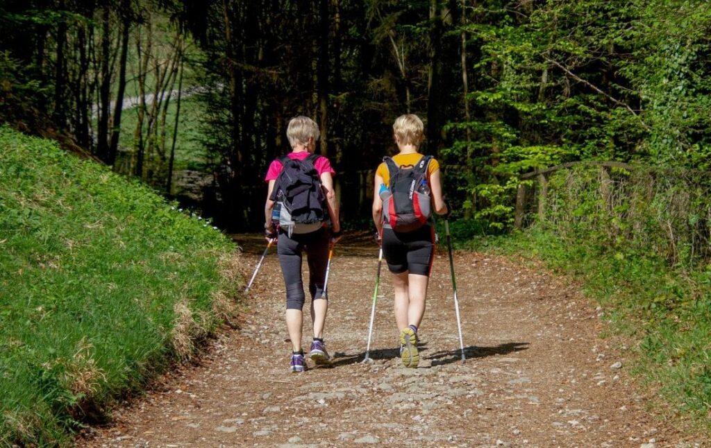 Чем скандинавская ходьба отличается от обычной? В чем преимущество скандинавской ходьбы и ее польза для организма