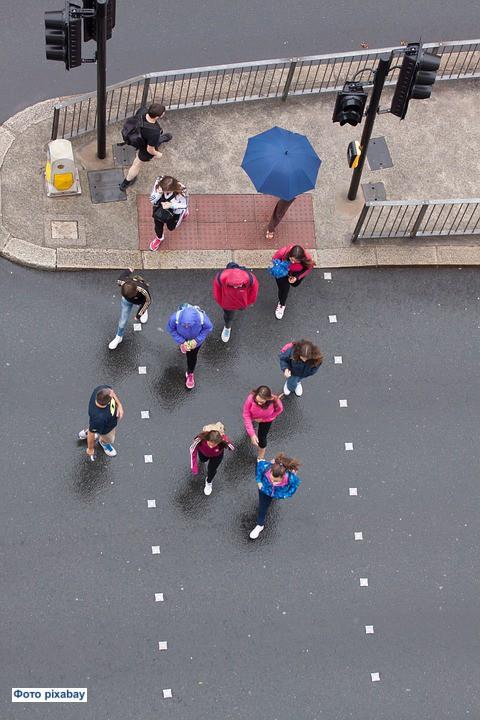 Отныне пешеходы будут получать штраф за использование смартфона на пешеходном переходе